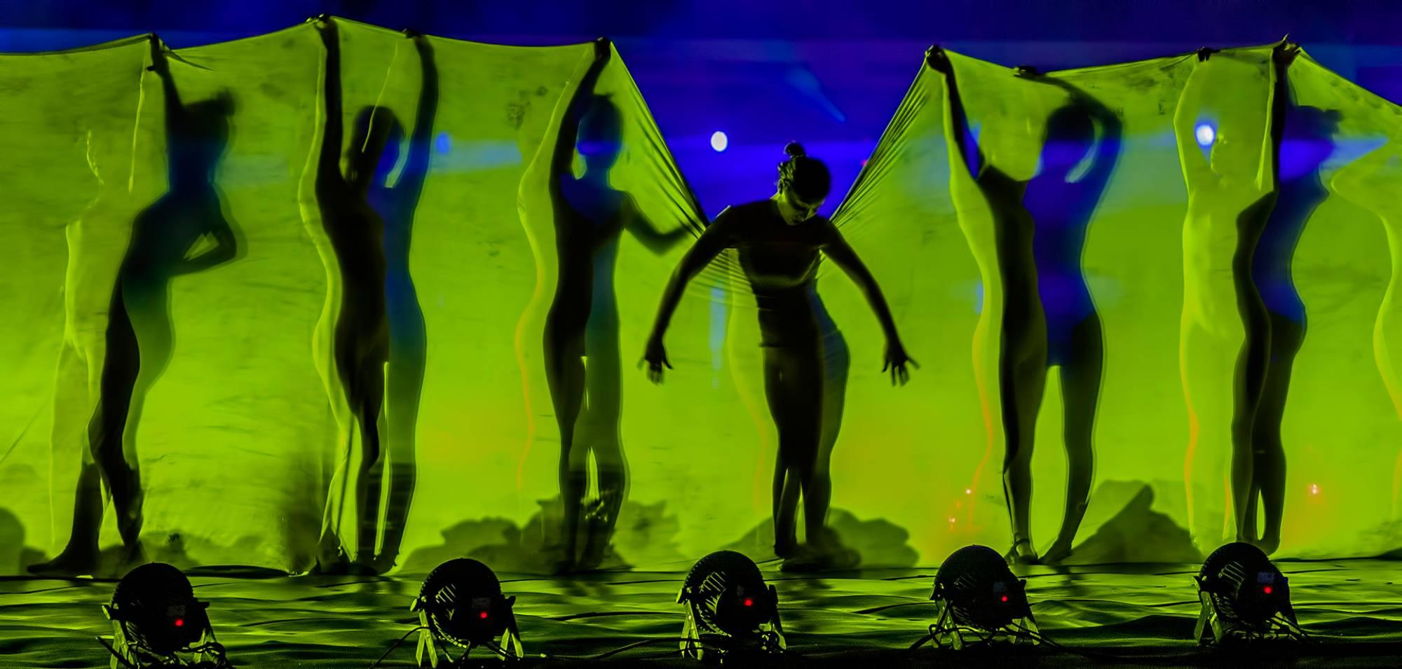 02 PSA Gold Medal, Mehmet Gokyigit, Cyprus, dancers of darkness